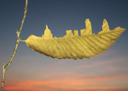 City skyline cut in yellow leaf LANG_EVOIMAGES