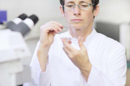 petri dish: Scientist working in lab