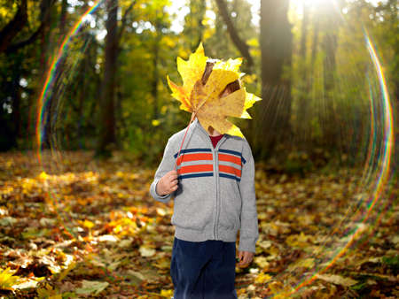 bashful: Boy holding autumn leaf in front of his face
