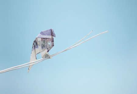 Origami british banknote imitating bird