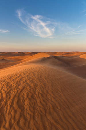vacant land: Sand dunes in desert,Dubai,United Arab Emirates LANG_EVOIMAGES