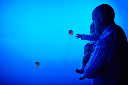 Father and son watching jellyfish at aquarium
