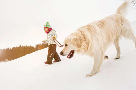 pooches: Girl walking dog in snow
