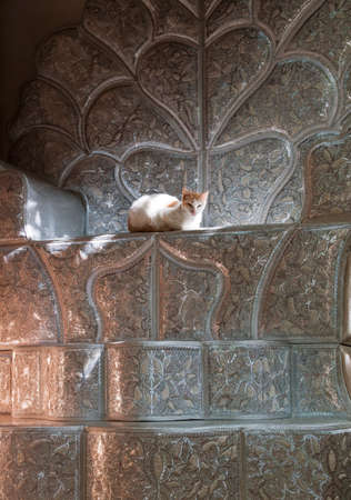 silliness: A cat sits on a bridal chair,made in the wood workshops in the medina of Fes,Morocco LANG_EVOIMAGES