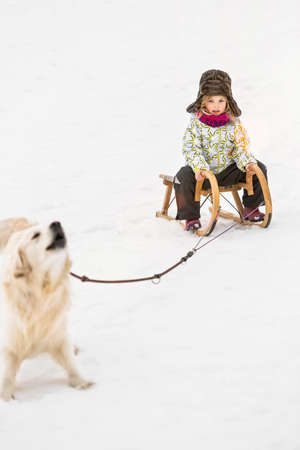Girl being pulled by dog on toboggan in snow
