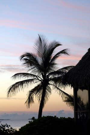 seascapes: Sunrise on tropical beach,Caribbean Sea,Placencia,Belize LANG_EVOIMAGES