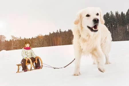 Labrador pulling girl through snow on toboggan LANG_EVOIMAGES
