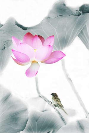 Pink lotus flower and bird
