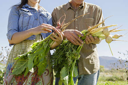 relaciones laborales: Cropped image of farming father and daughter holding root vegetables