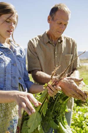 relaciones laborales: Padre, hija, agricultores, inspección, cosechas