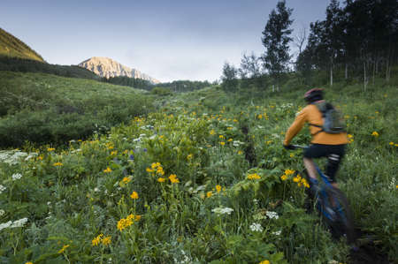 detoxing: Man mountain biking on the Snodgrass Mountain Trail, West Elk Mountains, Crested Butte, Colorado, USA LANG_EVOIMAGES