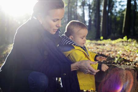 pelo castaño claro: Madre y niño pequeño mirando tocón de árbol