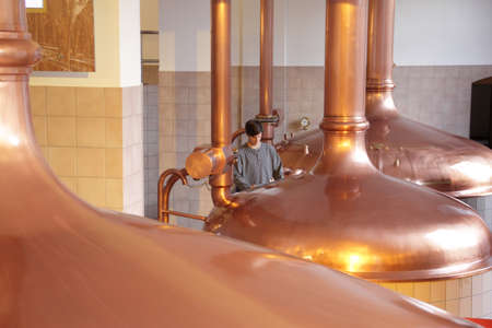 Young man working in brewery