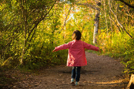 trouble free: Happy female toddler strolling through autumn woodland LANG_EVOIMAGES