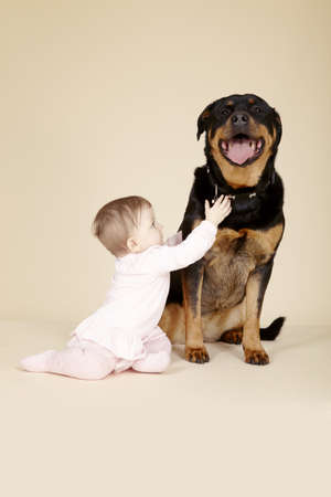 Studio portrait of  baby girl touching collar of Rottweiler LANG_EVOIMAGES