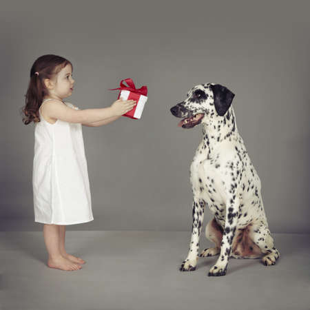 Studio portrait of female toddler handing gift to dalmatian dog LANG_EVOIMAGES