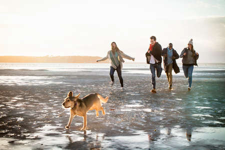Adult friends racing with pet dog on the beach