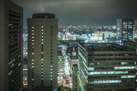 View of Tokyo at night,  Japan