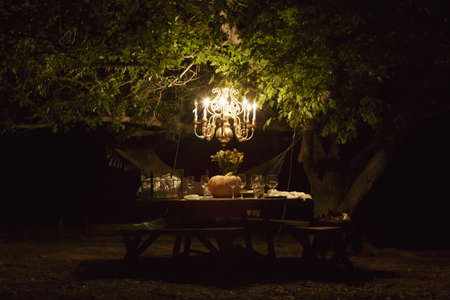 Table set under tree with chandelier at night