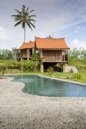 Stilt house holiday apartment with swimming pool, Ubud, Bali, Indonesia