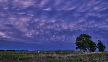 Mammatus clouds dangle from the anvil of this supercellular storm, Faucett, Missouri, USA