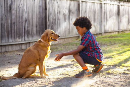 Boy training dog to give paw in garden