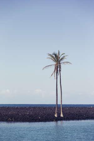 kona: Kona, Big Island, Hawaii LANG_EVOIMAGES