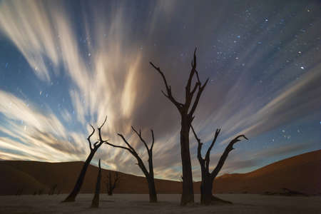 Stars and storm clouds over the dead acacia trees in Dead Vlei.Sossusvlei, Namibia