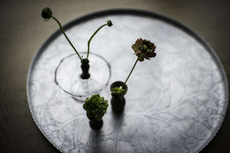 Still life of small vases of cut flowers on silver tray LANG_EVOIMAGES