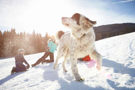 pooches: Children and pet dog enjoying playing in snow