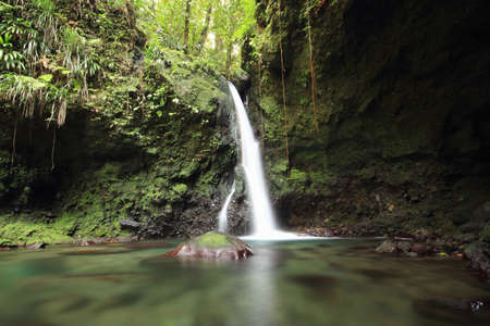 View of waterfall, Dominica, The Caribbean