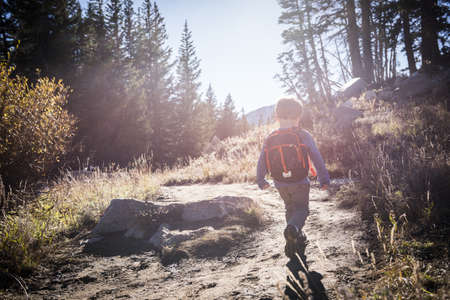 Toddler hiking, Catherines Pass Trail, Albion Basin, Alta, Utah, USA