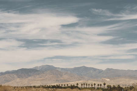 environmental issues: Distant view of wind farm and mountains, Palm Springs, California, USA