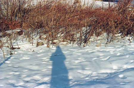 shadowed: Photographers self portrait shadow in snow covered field LANG_EVOIMAGES