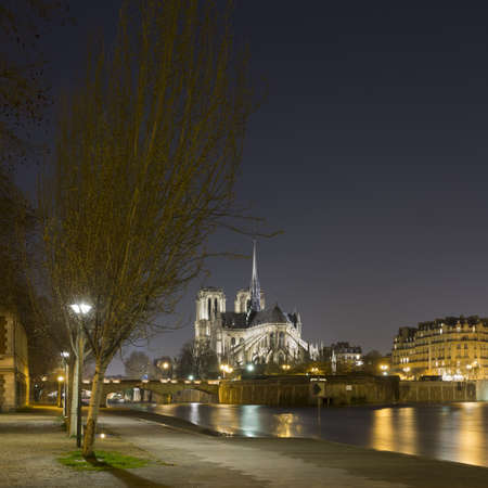 ile de la cite: View of Notre Dame and river Seine at night, Paris, France