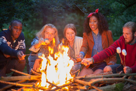 Friends toasting marshmallows by fire