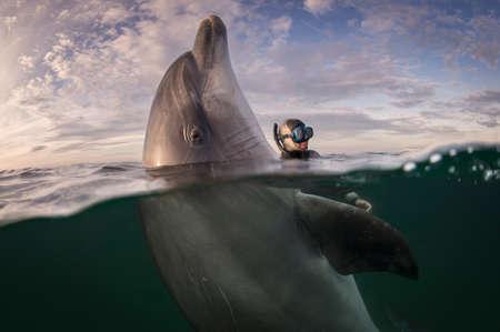 Freediver and Bottlenose dolphin, Inisheer Island, Ireland