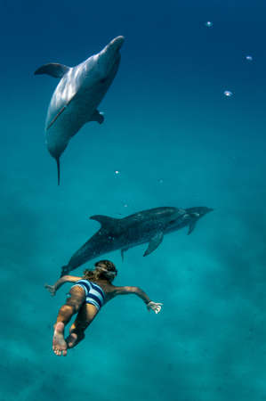 obscuring: Boy free diving with Atlantic spotted dolphins