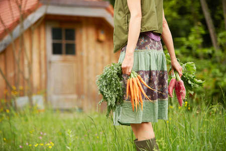 Cropped view of woman carrying vegetables in field