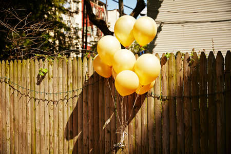 shadowed: Balloons by wooden fence LANG_EVOIMAGES