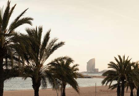 living idyll: Sunset at beach, Barcelona, Spain