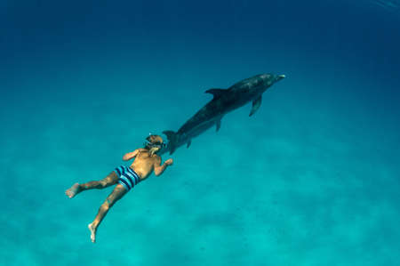 Boy free diving with Atlantic spotted dolphins