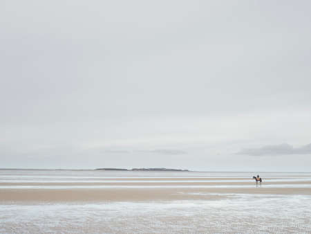 racehorses: Distant view of man on racehorse on empty beach, West Kirby, Wirral, England, UK
