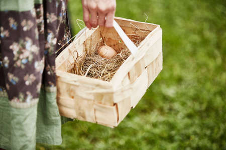 self sufficient: Hand of woman carrying fresh egg in basket LANG_EVOIMAGES