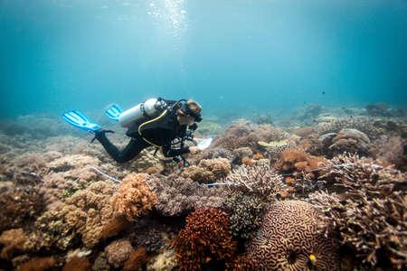 A scuba diver conducts a scientific survey on a coral reef, Raja Ampat, West Papua, Indonesia LANG_EVOIMAGES