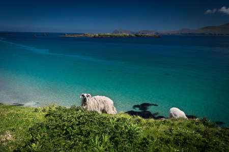 Great Blasket Island, Ireland LANG_EVOIMAGES