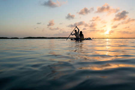 Silhouetted view of three adult friends on paddleboard at sunset, Islamorada, Florida, USA