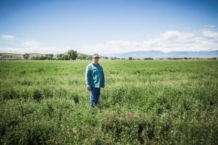 Mature man in field, Billings, Montana, USA