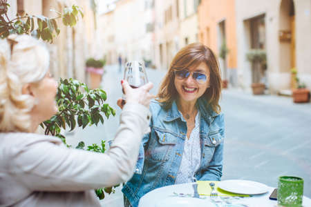 Two mature female friends making red wine toast, Tuscany, Italy