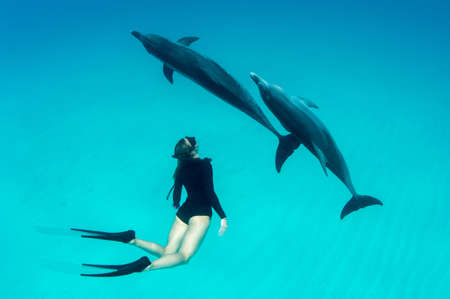 Woman free diving with Atlantic spotted dolphins LANG_EVOIMAGES